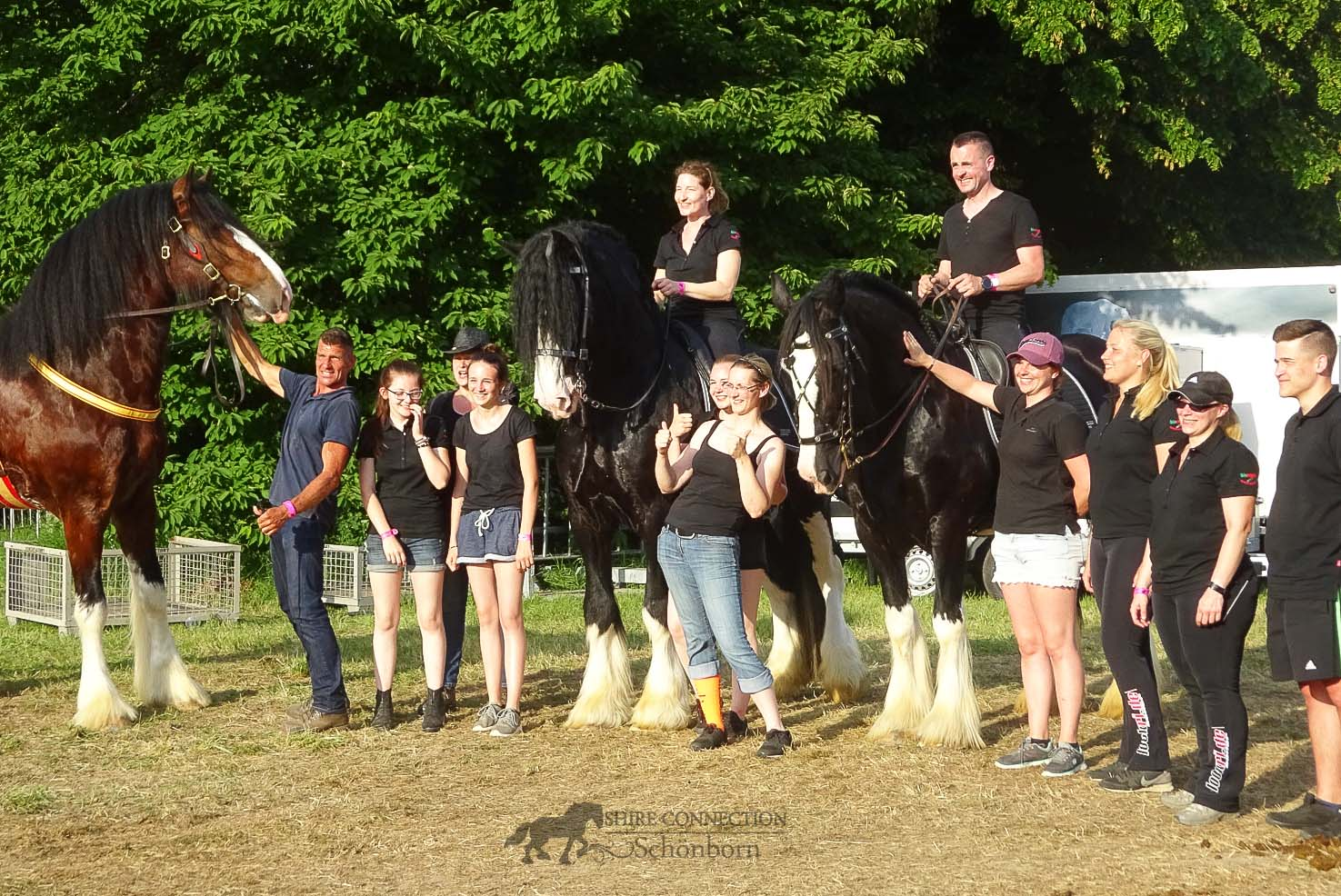 Equitana Open Air 2018 - Shire Horse Team