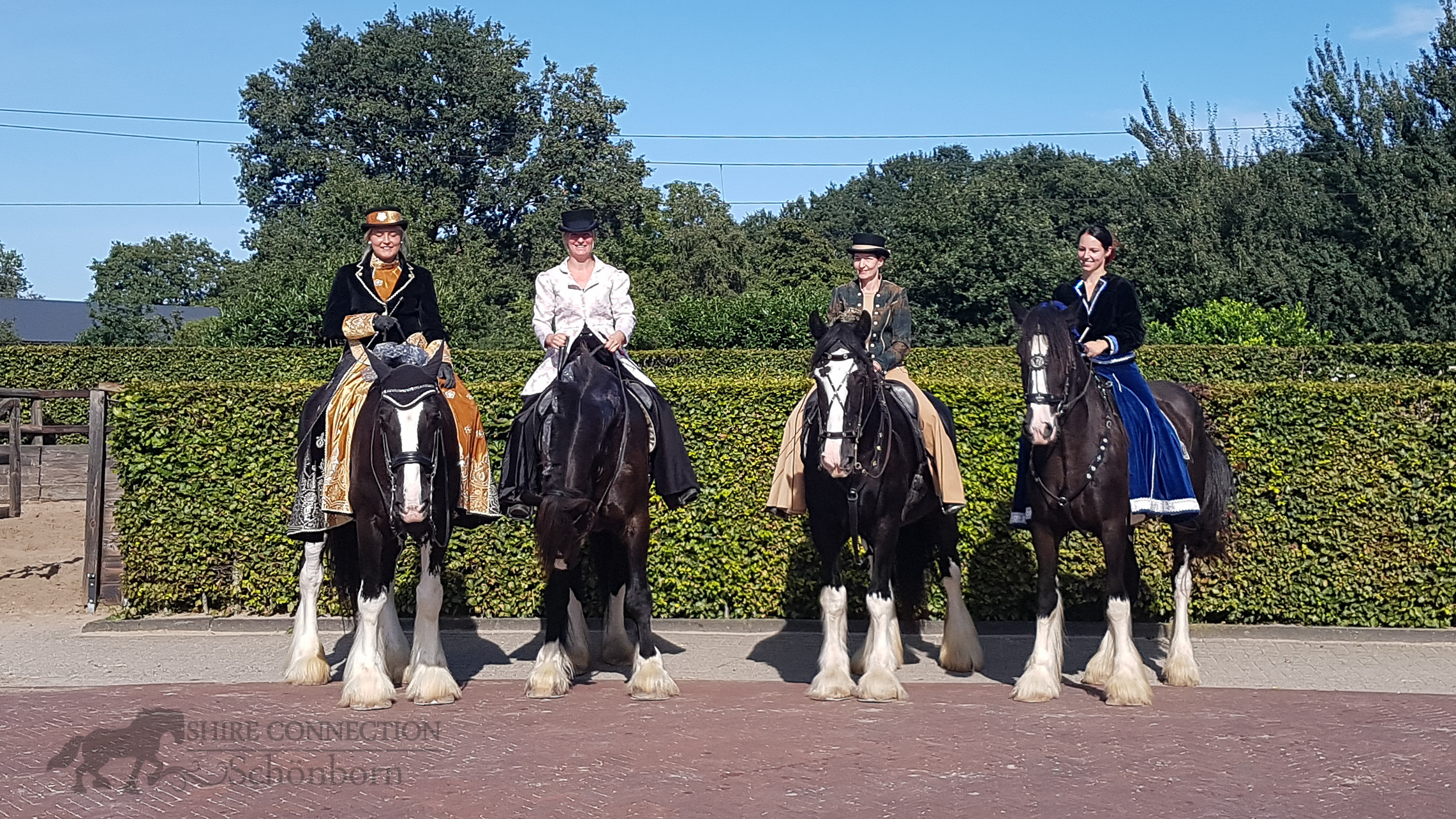 Shire Horse Show Holland